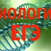 биология егэ фото.png